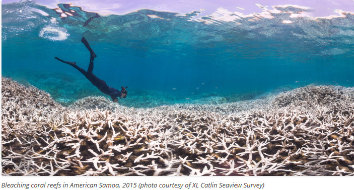 International_Society_for_Reef_Studies_Portal_to_the_World_s_Coral_Reefs_-_2015-10-21_10.14.41