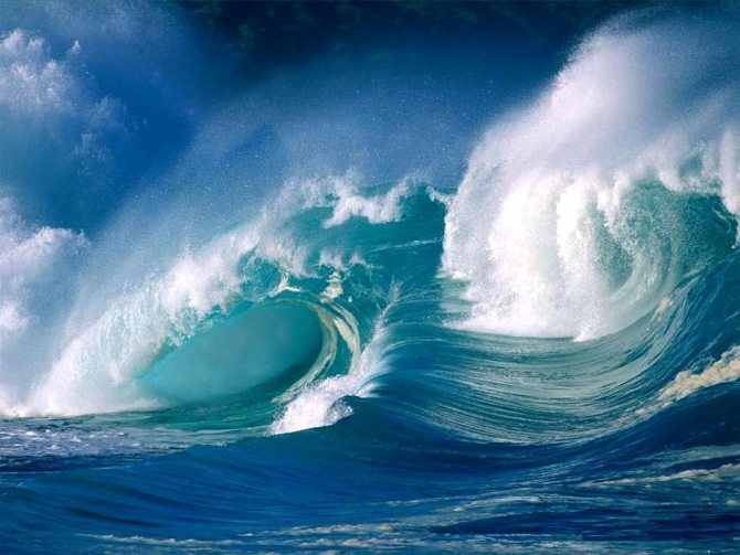 Ocean-8c5n