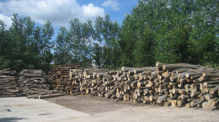 Is Kiln Dried Wood Better Than Air Dried