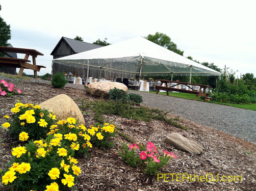The beautifully-landscaped grounds offer many options for photos. Here's the dinner tent outside of the barn.
