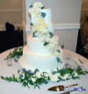 Wedding Cake: Natalie and Matt's wedding at Genesee Grande, Syracuse, NY