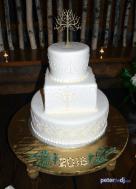 Irene and Robert's wedding at Tailwater Lodge, Altmar, NY - DJ Peter Naughton - December 2018