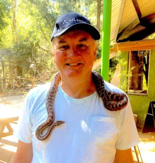 snake Welcome Life Free Of Fear Of Snakes