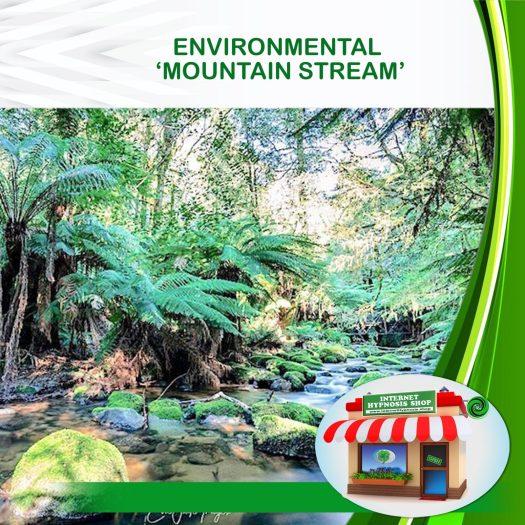 ENVIRONMENTAL 'MOUNTAIN STREAM''-min