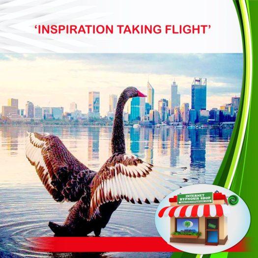 'INSPIRATION TAKING FLIGHT'-min