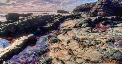 Hartland Bay (2)