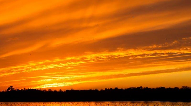 Sunset viewed across Ibsley Water (2)