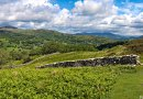 Panorama view through the drystone wall