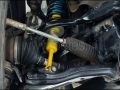 Pete's Tuned Fortuner (14)