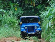Pete's Jeep MM540 (2)