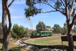 Torpedo - 1915 Hunslet Steam Locomotive Pete's Hobby Railway Junee