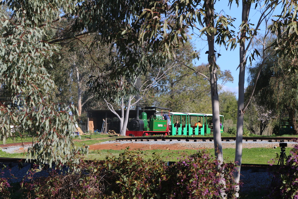 Train Spotting at Pete's Hobby Railway, Junee Hunslet steam locomotive