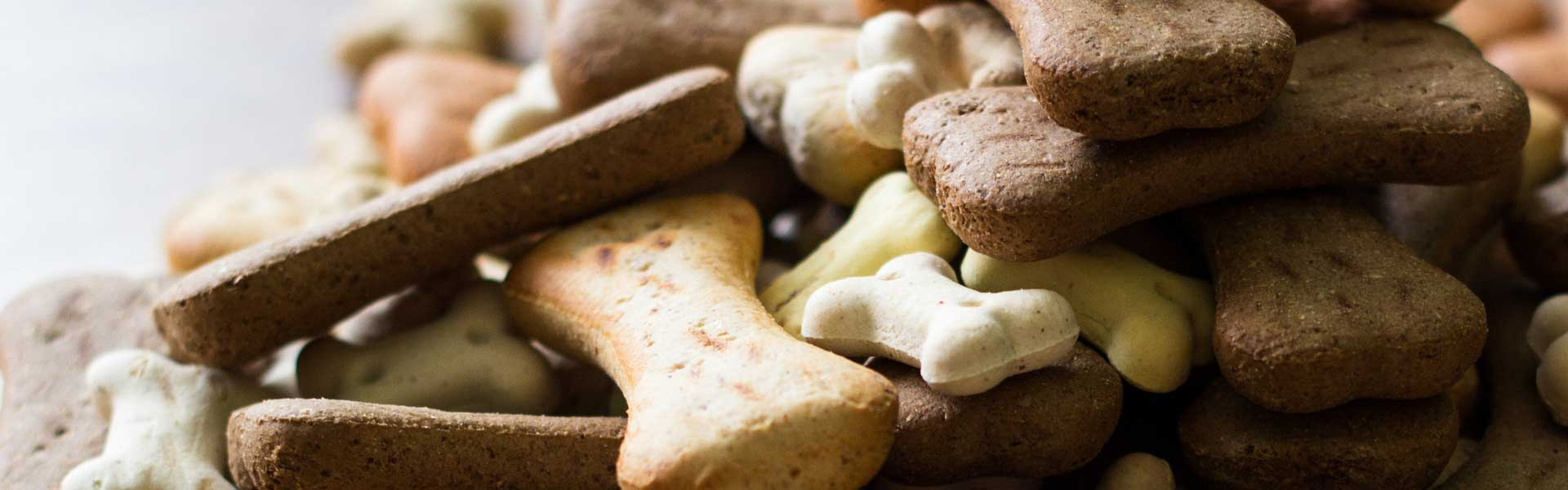 Picture of dog biscuits