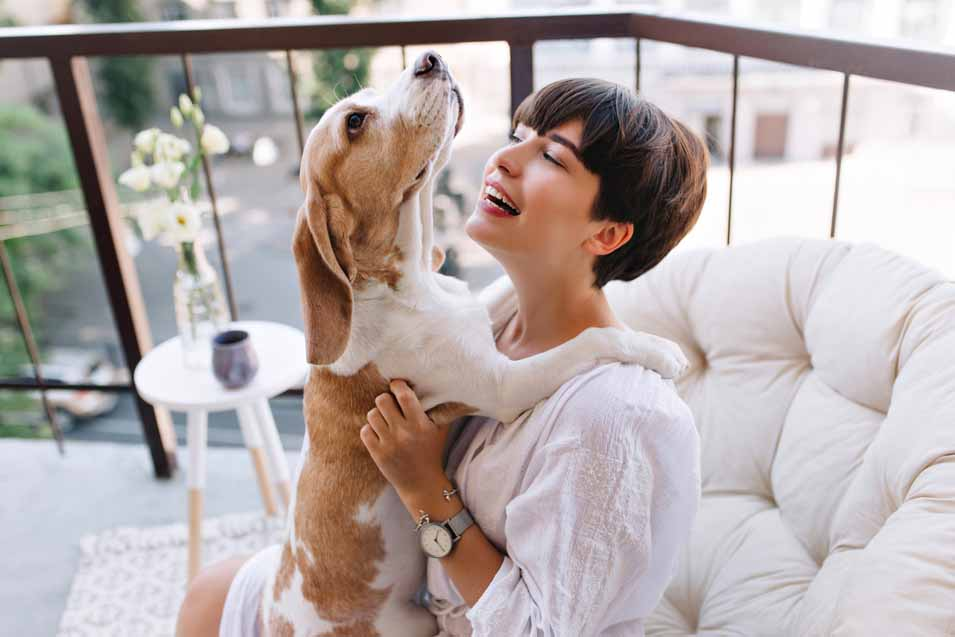 Picture of woman holding a Basset Hound