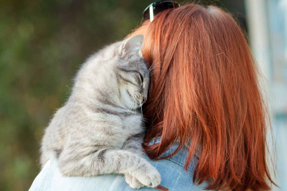 Picture of woman holding a cat