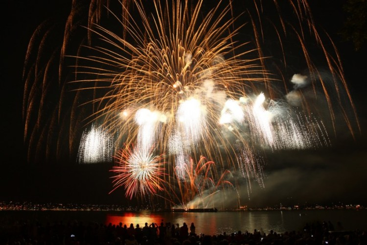 Fireworks can be very loud and stress your pet. By: GoToVan
