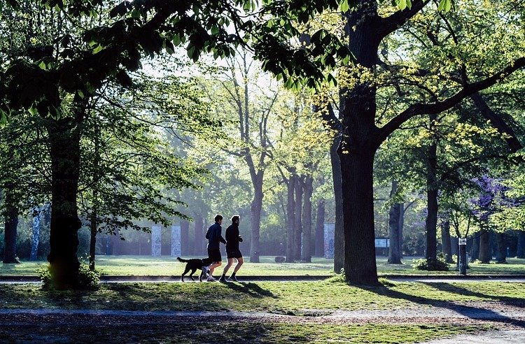 Photo of two people running in a park with a dog, shot from a distance