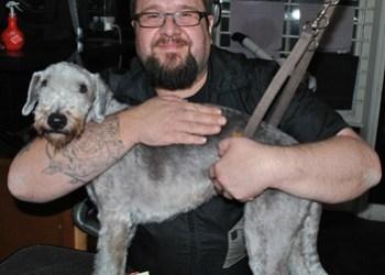 Colin Taylor Opens Dog Grooming School Pet Gazette