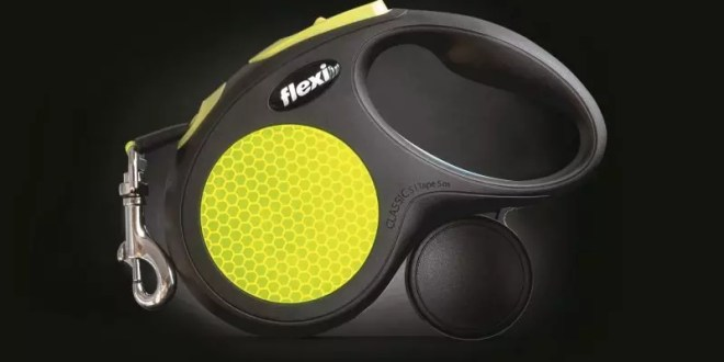 New Neon lead increases dog walkers' visibility