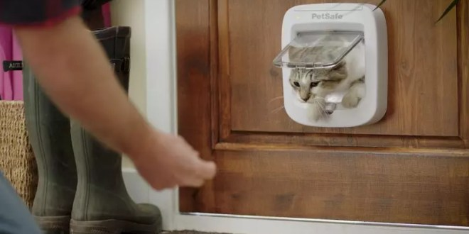 PetSafe® Brand launches new Microchip Cat Flap