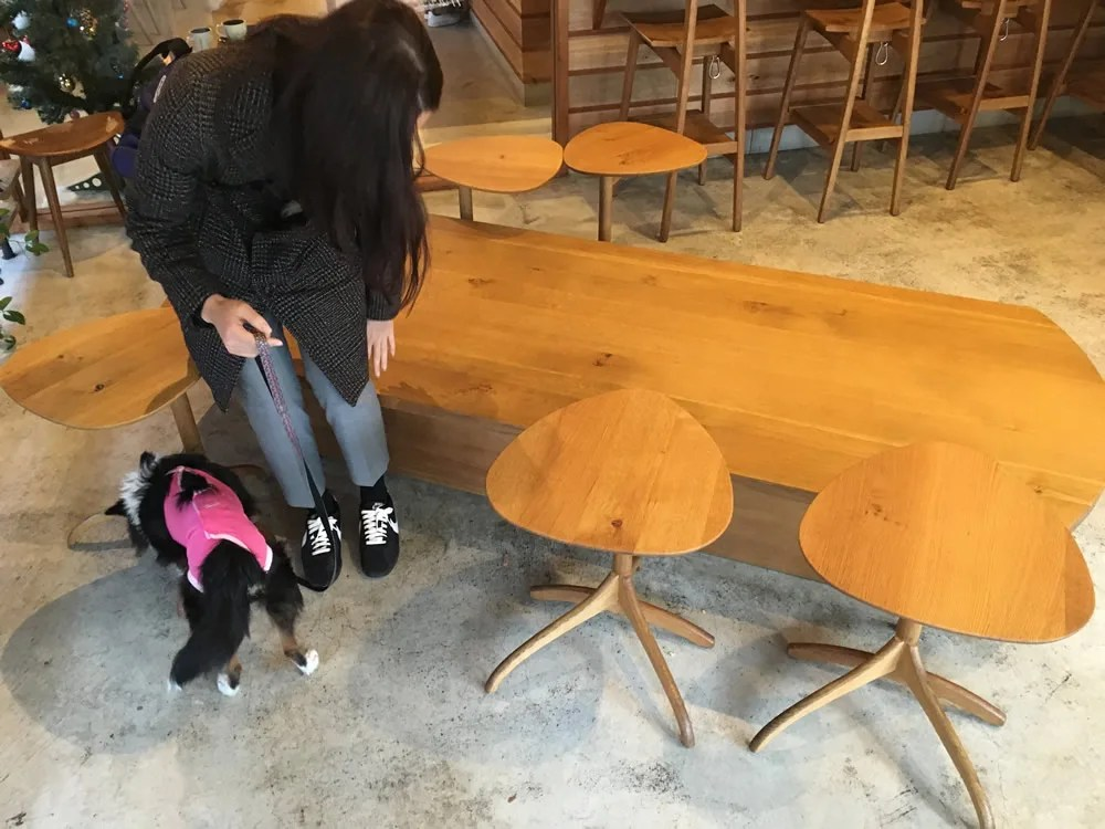 スタバ駒沢1丁目店 犬と一緒に店内に