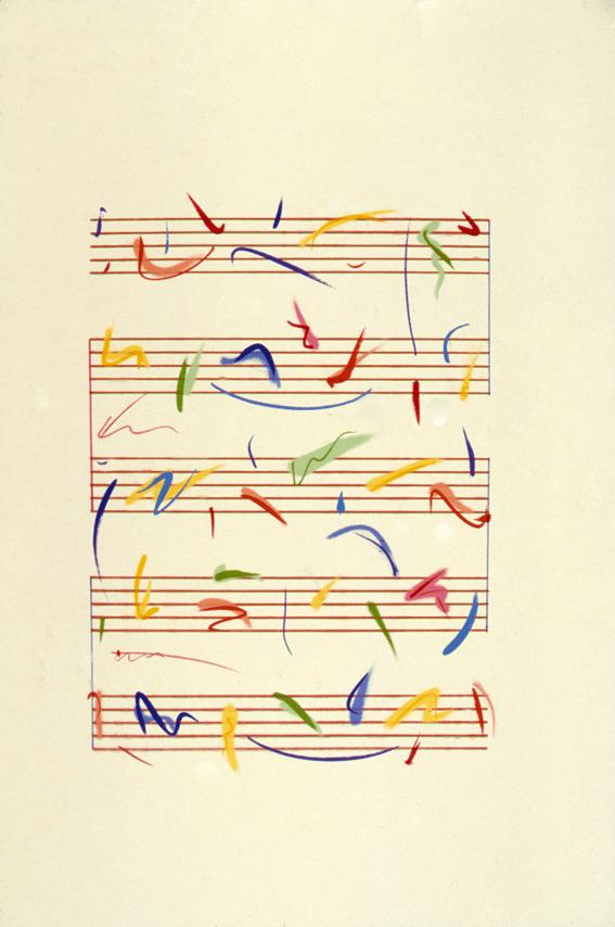 Suite Birds of Paradise – Gavião
