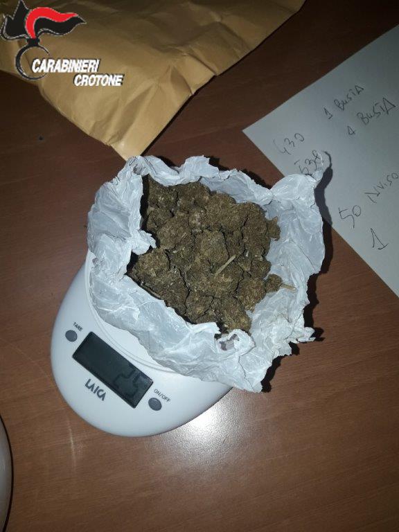 Due arresti per detenzione e coltivazione di sostanze stupefacenti