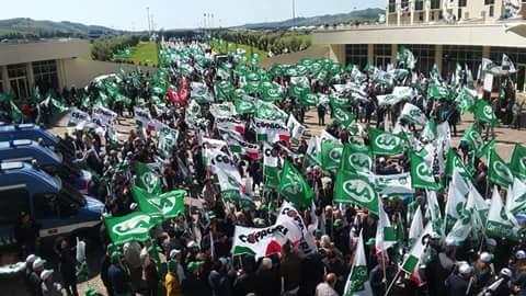 """""""Ei fu.. siccome immobile"""" Duemila Agricoltori in Protesta alla Regione Calabria"""