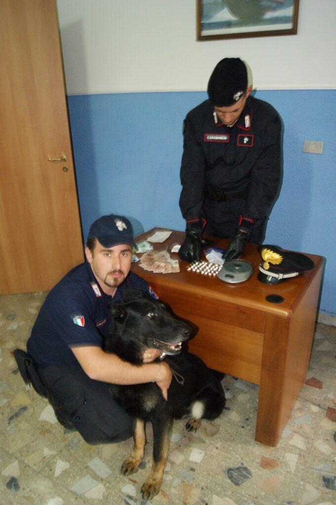 Mesoraca, il pastore tedesco dei Carabinieri fiuta il nascondiglio della droga: arrestato spacciatore