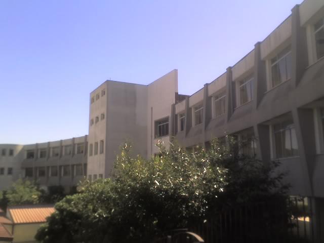 """Lettera aperta del Comitato Studentesco del Liceo Classico """"D. Borrelli"""" di Santa Severina"""