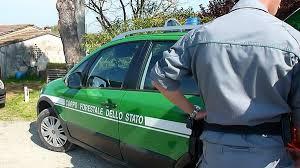 CONIUGI SORPRESI A DISBOSCARE UN'AREA A PETILIA POLICASTRO