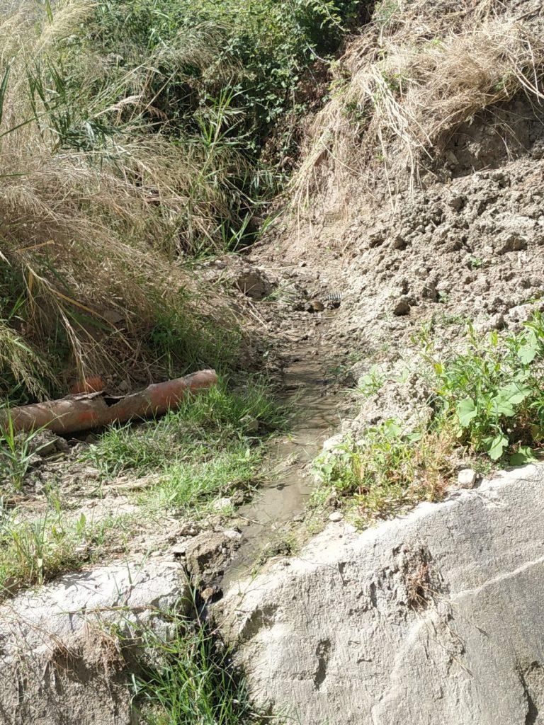 Più Petilia chiede al sindaco intervento urgente per i forti miasmi a Foresta