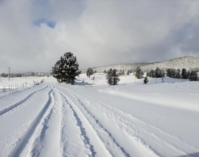 Perturbazione invernale in Calabria, cade la neve in Sila