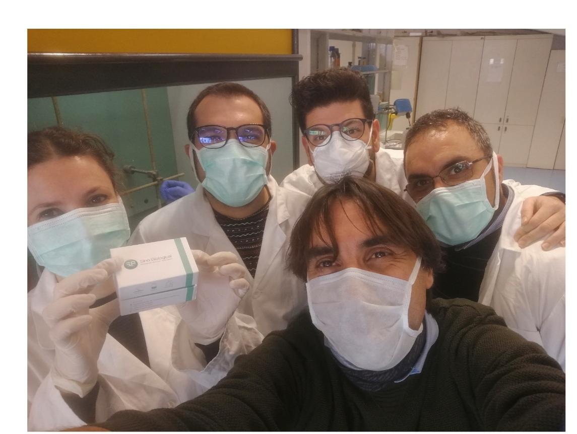 Dall'Unical anticorpi sintetici contro il Coronavirus