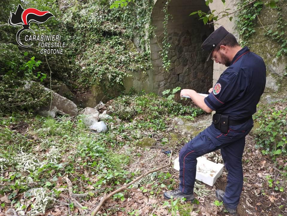 Umbriatico: demolito muretto provinciale illecitamente