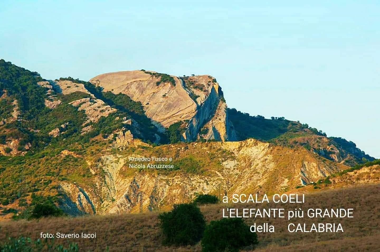 Scoperto a Scala Coeli A Lifànda: l'elefante di roccia tra i  più grandi al mondo