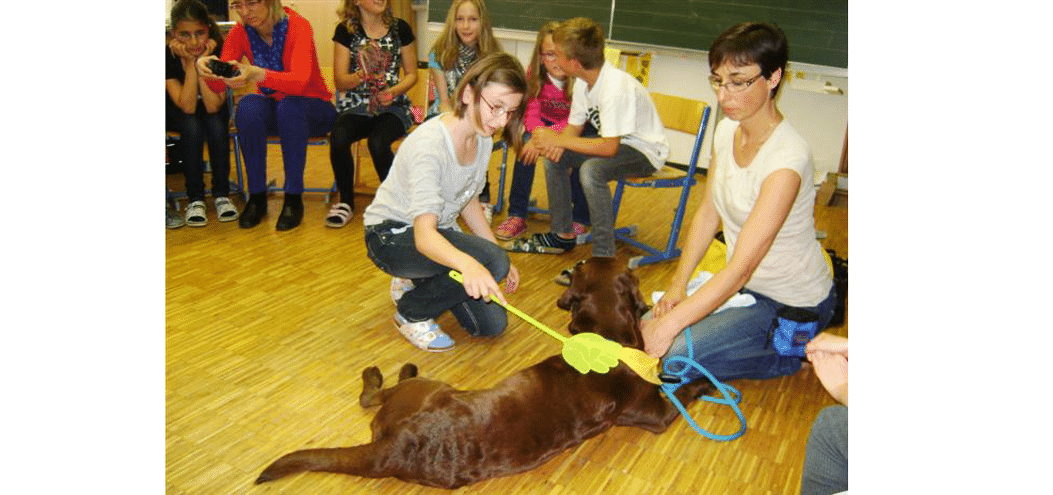 Therapy-dogs-in-school