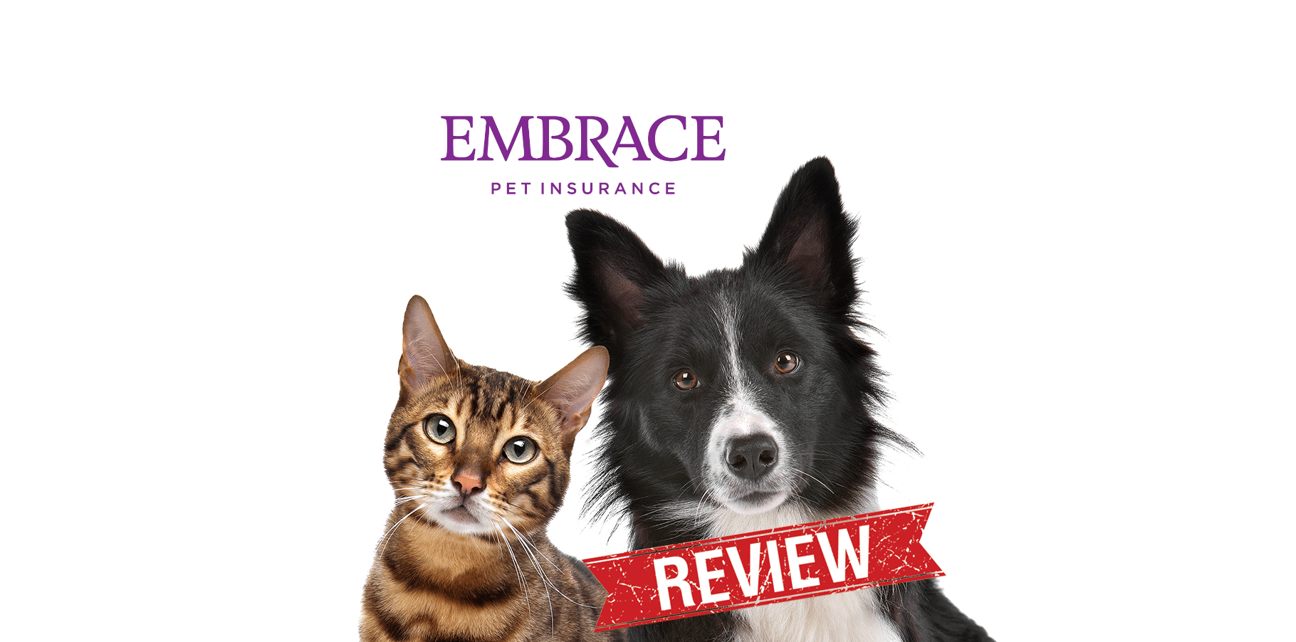 embrace pet insurance reviews