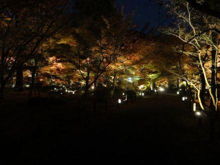 20161124 Kyoto 28