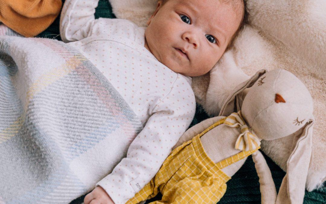Le doudou et nos bébés | Un indispensable ?