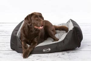 Scruffs Expedition Water Resistant Box Bed For Pets