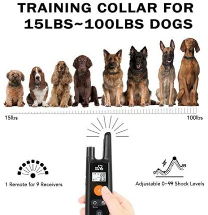 Dog Training Collar - Rechargeable Dog Shock Collar with Beep, Vibration and Shock Training Modes, Rainproof Training Collar, Long Remote Range, Adjustable Shock Levels Shock Collars for Dogs