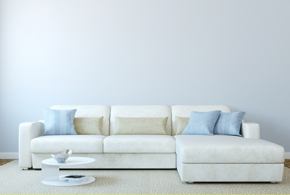 natural sofa deodorizer thomasville furniture sectional sofas 9 baking soda uses for pet owners petmd deodorize your home