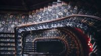 A Guide to Choosing the Best Carpets For Stairs | Pet My ...