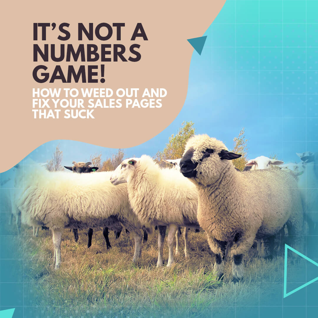 It's not a numbers game! How to weed out and fix your sales pages that suck