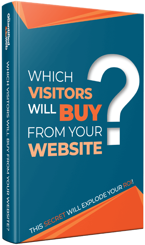 Which visitors will buy from your website?