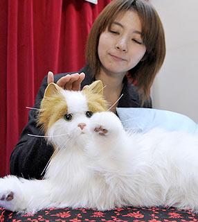 Já que tem pouco gato no mundo, japoneses criam um gato-robô