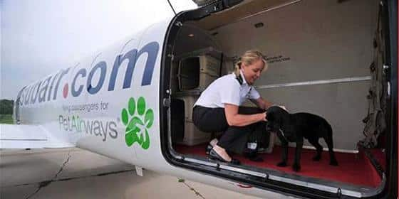 pet-airways