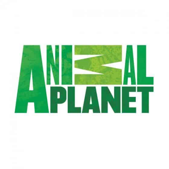 Vermivet transmite sua mensagem em setembro durante a programação do Animal Planet