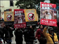 China quer prender quem comer carnes de gato ou cachorro